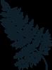 fern leaf 4